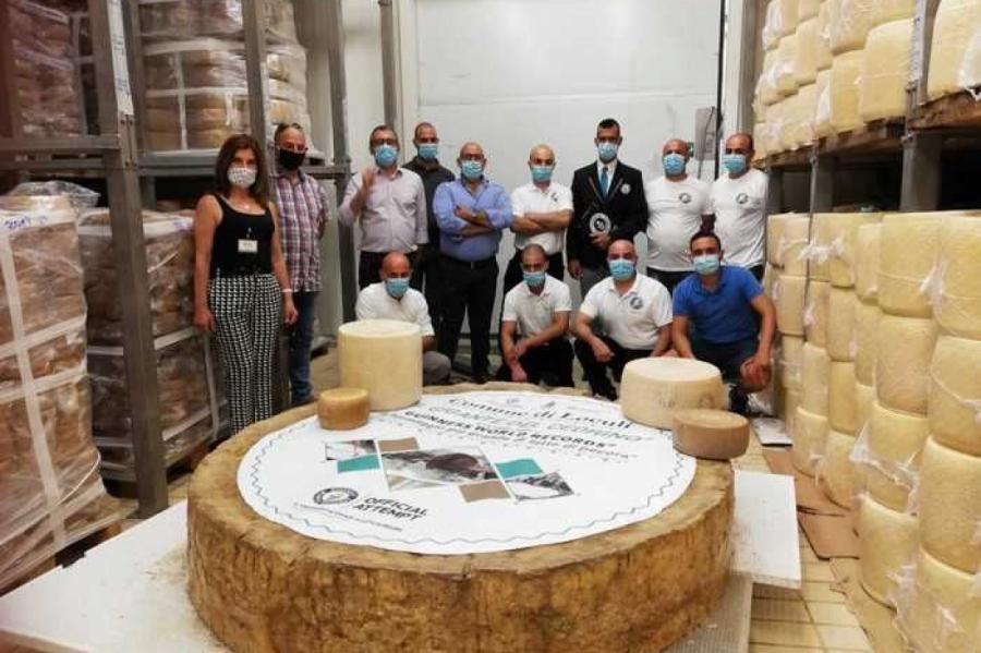 Итальянцы создали самую большую головку сыра и побили собственный рекорд