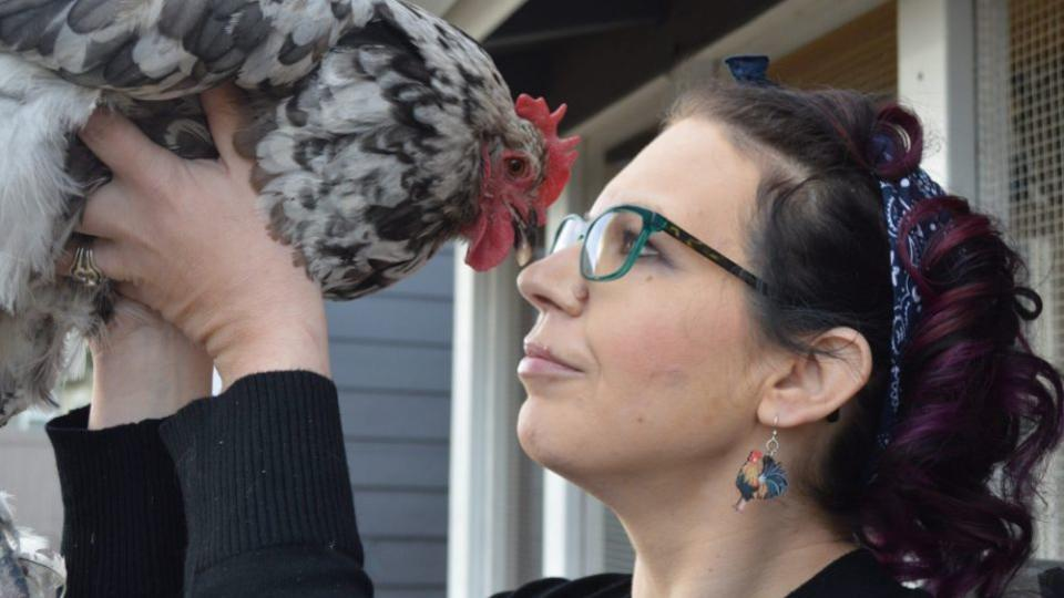 Американка потратила 10000 долларов на спасение курицы