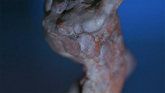 Отпечаток пальца Микеланджело нашли на ягодицах «Раба»